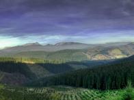 Panoramica UBIDE (Gorbeialdea)